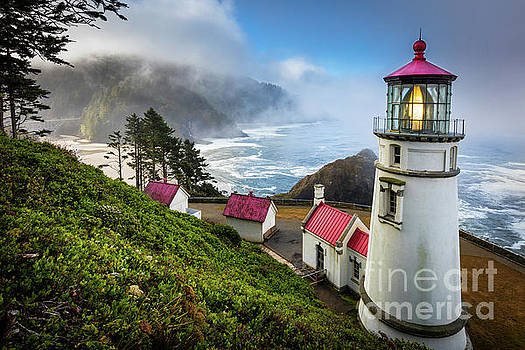 Heceta Fog by Inge Johnsson