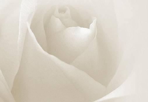 Her Pure Heart by The Art Of Marilyn Ridoutt-Greene