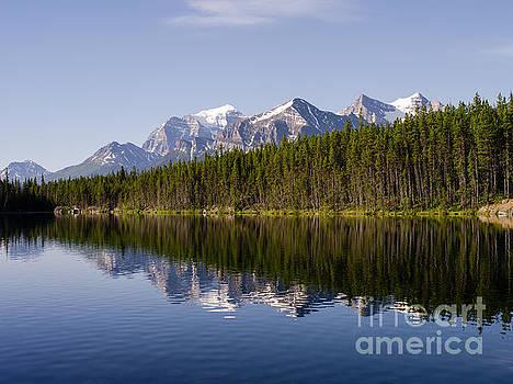 Herbert Lake  by Tracy Knauer