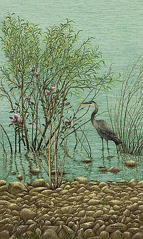Heron at Crabtree Creek by Mary Ann King