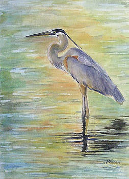 Heron at the Lagoon by Patricia Pushaw