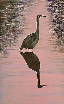 Heron by Laurie Stewart