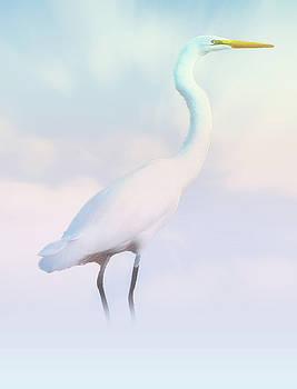 Heron or Egret Stance by Joseph Hollingsworth