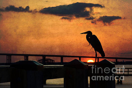 Heron Silhouette by Joan McCool