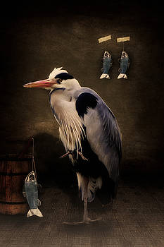 Angela Doelling AD DESIGN Photo and PhotoArt - Heron