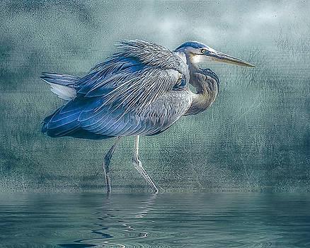 Heron's Pool by Brian Tarr