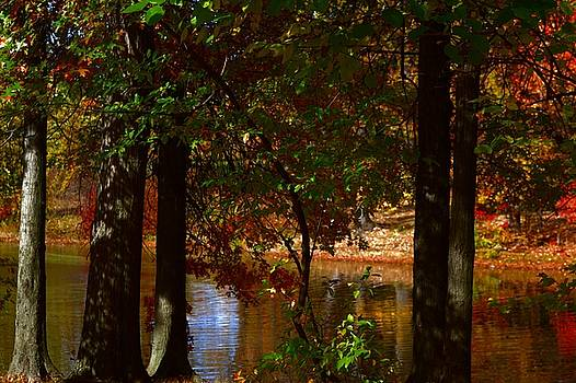 Hidden lake by Thomas Mack