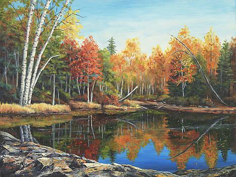 Hidden Pond, New Hampshire by Elaine Farmer