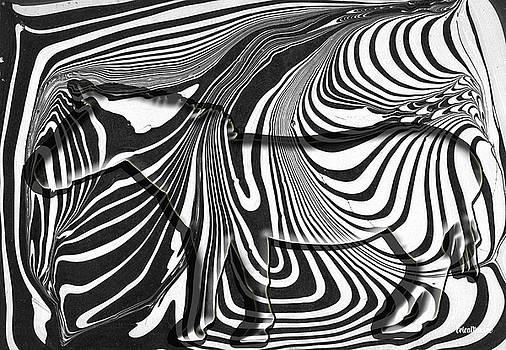 Hidden Zebra by Ericamaxine Price