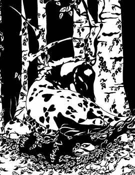 Hiding Places by Margaret Platt