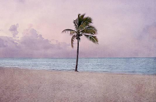 Kim Hojnacki - Higgs Beach - Key West