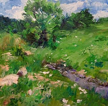 High Country Yarrow by Carol Hopper