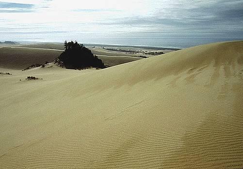 High Dunes 1 by Eike Kistenmacher