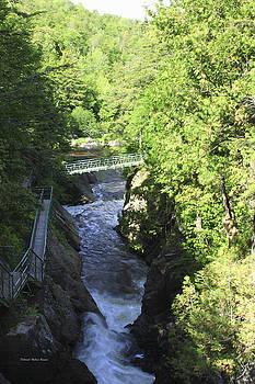 Deborah Benoit - High Falls Gorge