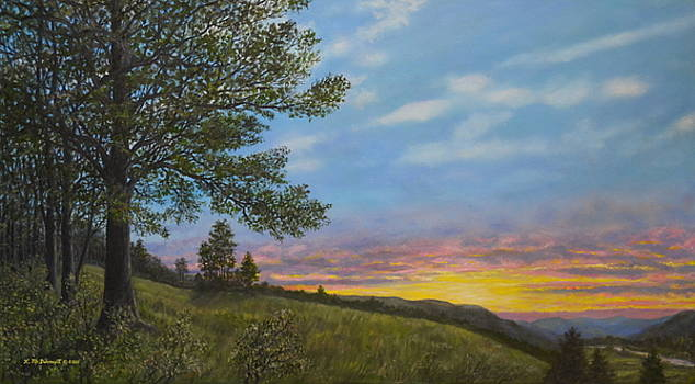 High Meadow Sundown by Kathleen McDermott