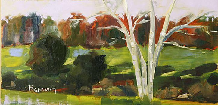 High Ridge Vista by Barbara Benedict Jones