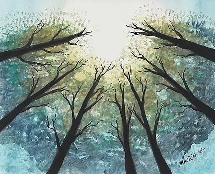 High Trees by Edwin Alverio