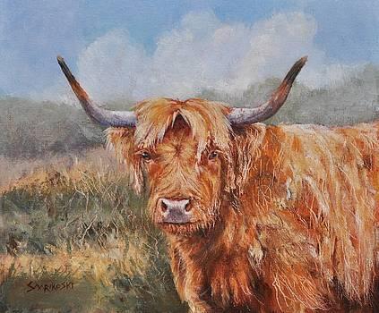 Highland Cow Portrait by Louise Charles-Saarikoski