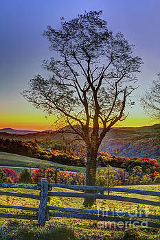 Dan Carmichael - Hiking in Autumn