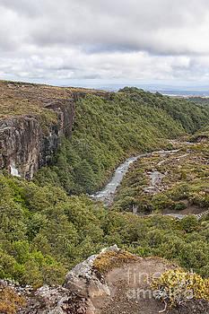 Patricia Hofmeester - Hiking path near waterfall