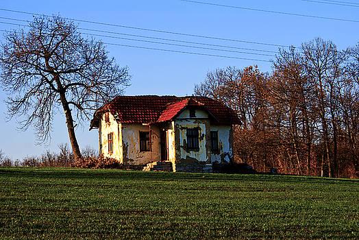 Hill house by Milan Mirkovic