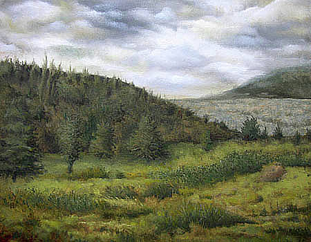 Hillside by Timothy Henneberry