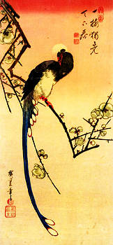 Hiroshige on a branch by Theodora Brown