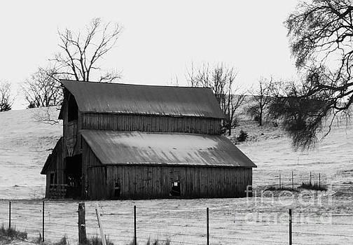 History Barn by J L Zarek