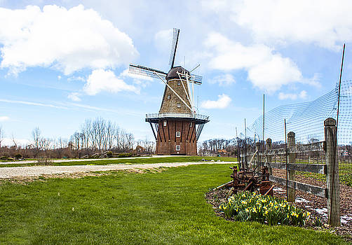 Holland Windmill Park by Tammy Chesney