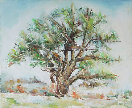 Holly Tree by Jovica Kostic