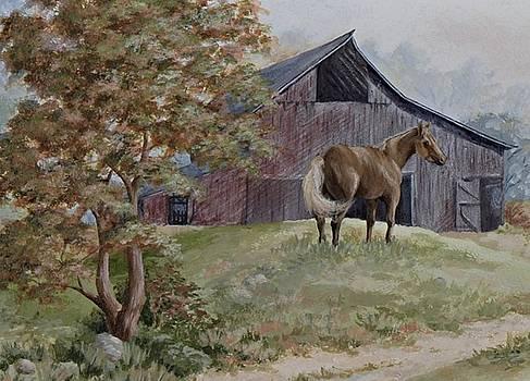 Home at Last by Kathleen Keller