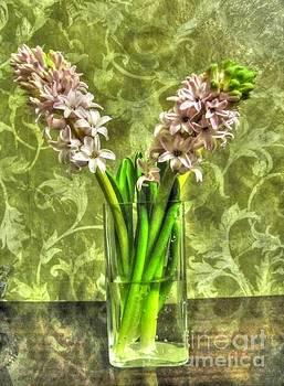 Home flowers by Yury Bashkin