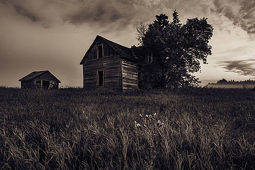 Home No More by Nebojsa Novakovic