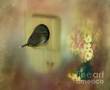 Home Sweet Home by Brenda Bostic