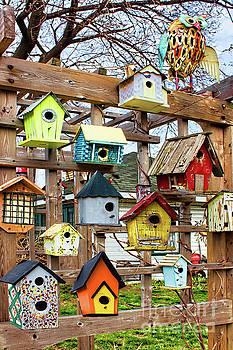 Home Tweet Home by Barbara McMahon
