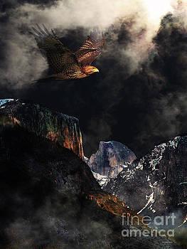 Wingsdomain Art and Photography - Homeward Bound v2