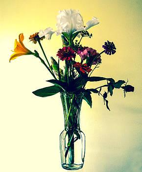 Honey Creek Flowers by Tom Zukauskas