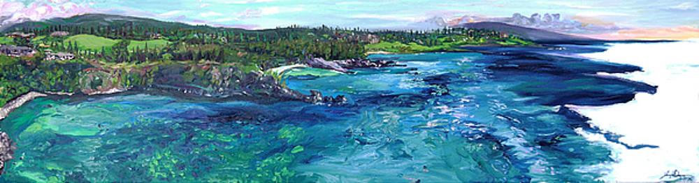 Honolua Bay Cliffs by Joseph Demaree