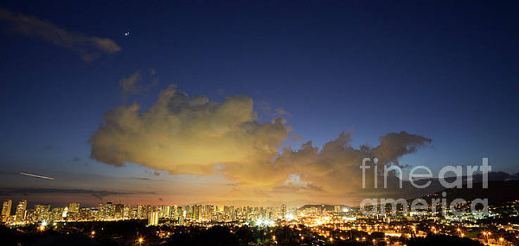 Honolulu Night Skyline by Charmian Vistaunet