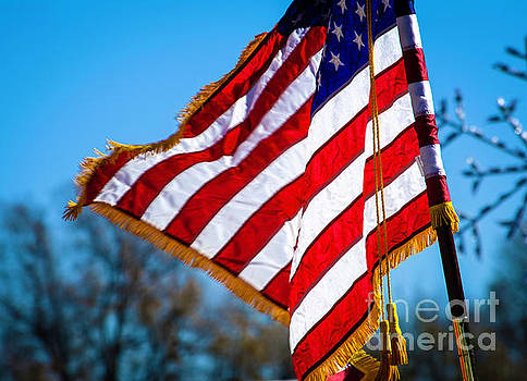 Honor Guard Flag by JW Hanley