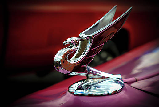 Hood Ornament by Athena Mckinzie