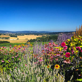 Hood River Valley Flowers by Brian Governale