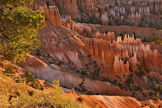 Hoodoos at Sunrise by Stephen  Vecchiotti