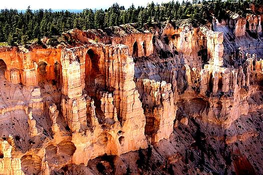 Hoodoos Rule by Charlene Reinauer