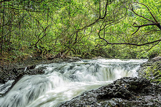 Ho'olawa Stream by Kelley King
