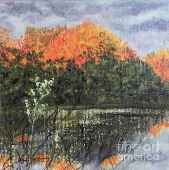 Horn Pond in Autumn by Iris M Gross