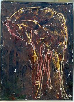 Horse 01 by Mohd Raza-ul Karim