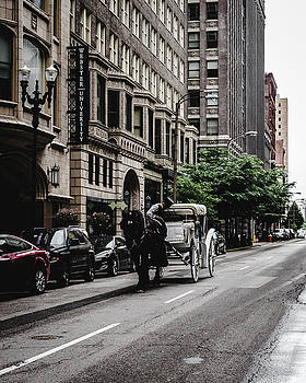 Horse and chariot in downtown Saint Louis by Dylan Murphy
