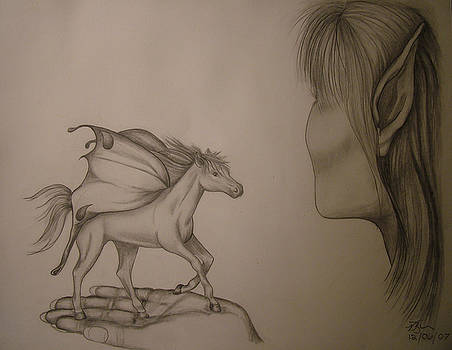 Horse and Fairy by Vickie Roche