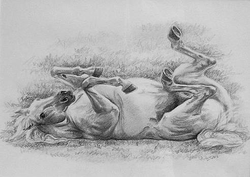 Horse Bliss by Donna Teleis